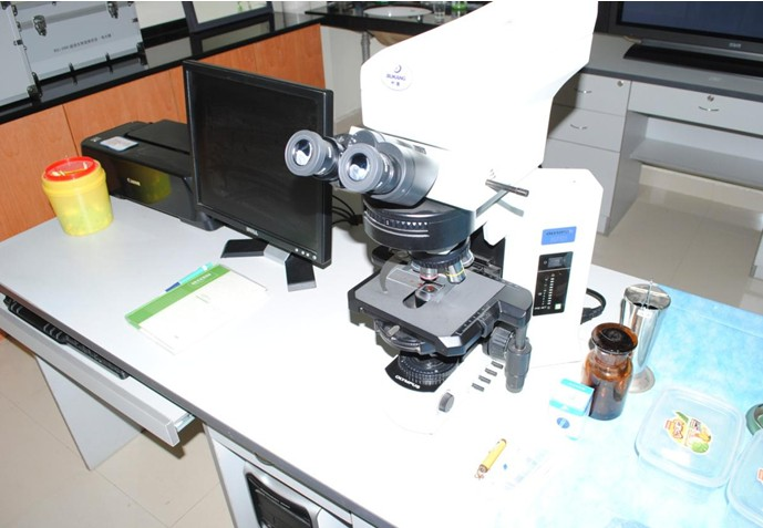 一滴血检测仪器